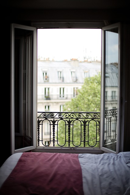 Paris Hotel Window